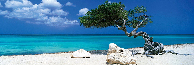 arbre-mer